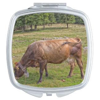 Kuh, die in einer Wiese isst Taschenspiegel