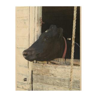Kuh durch alte Scheunentür Holzdruck