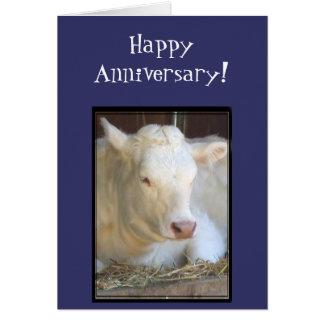 Kuh-Grußkarte des glücklichen Jahrestages weiße Karte