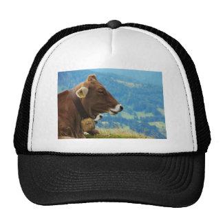 Kuh im Gebirge Retrocap