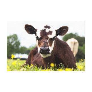 Kuh-Leinwand Leinwanddruck