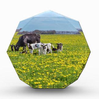 Kuh mit den Kälbern, die in der Wiese mit Acryl Auszeichnung