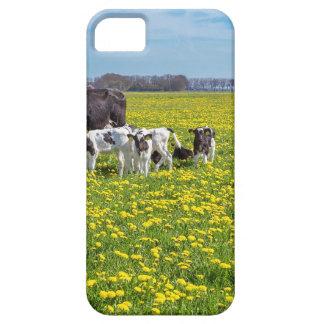Kuh mit den Kälbern, die in der Wiese mit Schutzhülle Fürs iPhone 5