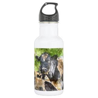 Kühe auf dem Gebiet Edelstahlflasche