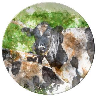 Kühe auf dem Gebiet Porzellanteller