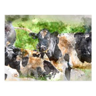 Kühe auf dem Gebiet Postkarte