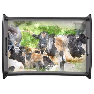 Kühe auf dem Gebiet Tablett