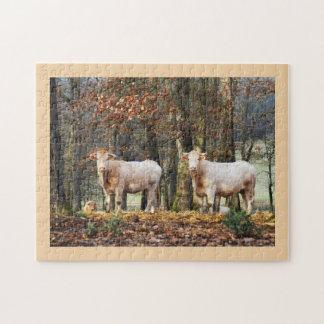 Kühe im Waldland, Frankreich Puzzle