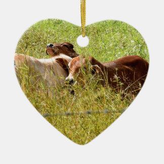 KÜHE LÄNDLICHES QUEENSLAND AUSTRALIEN KERAMIK Herz-Ornament