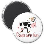 Kühe sind Spaß Magnets