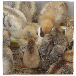 Küken auf dem Strohessen füttern im Huhnkorb Stoffserviette