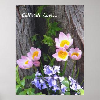 Kultivieren Sie Liebe Poster