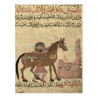 Kümmerte sich für das Pferd, Illustration Postkarte
