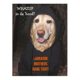 Kundengerechte 90 lbs. Labrador im Hoodie Postkarte