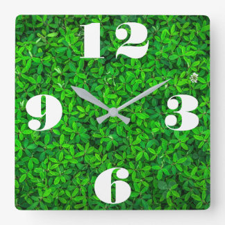 Kundengerechte frische grüne Pflanze Quadratische Wanduhr