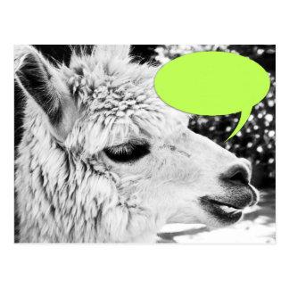 Kundengerechte Lama-Sprache-Blasen-Postkarte Postkarte