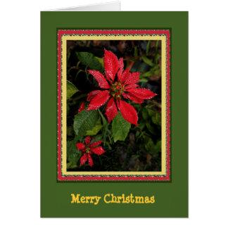 Kundengerechte Poinsettia-Weihnachtskarte Karte