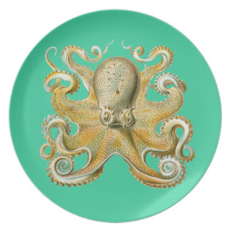 Kundengerechte Vintage Haeckel Krake Flacher Teller