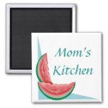 Kundengerechte Wassermelone-Magneten Magnete