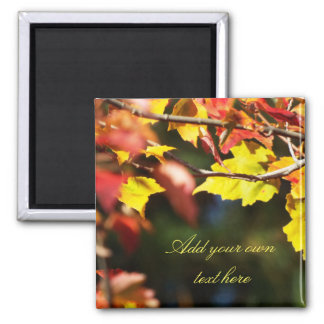 Kundengerechter Text des Herbst-Blattmagneten Quadratischer Magnet