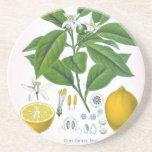 Kundengerechter Vintager Zitronen-Sandstein-Unters Untersetzer