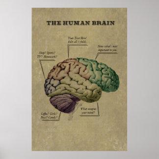 Kundengerechtes menschliches Gehirn-Plakat, Poster