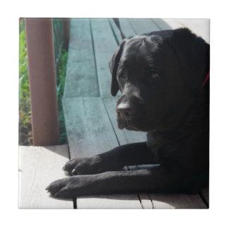 Kundengerechtes schwarzes Labrador retriever Fliese