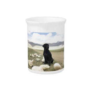 Kundengerechtes schwarzes Labrador retriever Krug