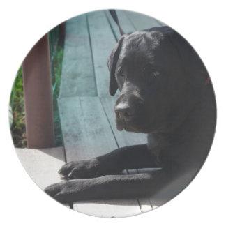 Kundengerechtes schwarzes Labrador retriever Melaminteller