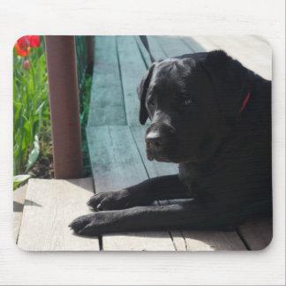 Kundengerechtes schwarzes Labrador retriever Mousepad