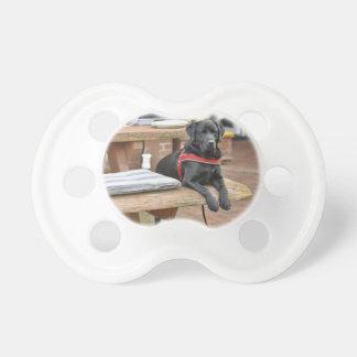 Kundengerechtes schwarzes Labrador retriever Schnuller