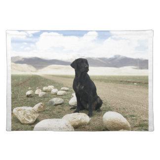 Kundengerechtes schwarzes Labrador retriever Stofftischset