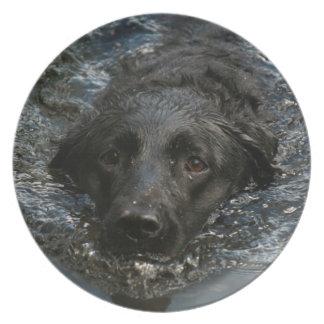 Kundengerechtes schwarzes Labrador retriever Teller