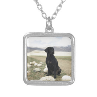 Kundengerechtes schwarzes Labrador retriever Versilberte Kette
