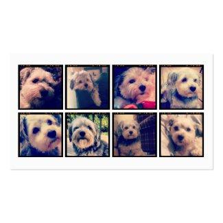 Kundenspezifische Foto-Collage mit quadratischen F Visitenkartenvorlagen