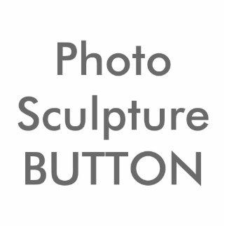 Kundenspezifische Foto-Skulptur Btton leere Fotoskulptur Button