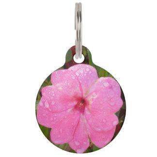 Kundenspezifische Haustierumbauten der rosa Blume Tiernamensmarke