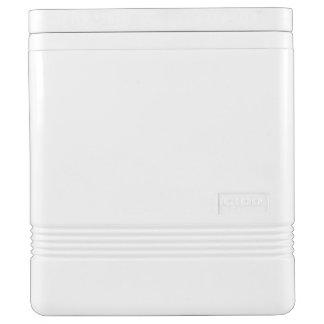 Kundenspezifischer Iglu kann cooler - 24 können Igloo Kühlbox