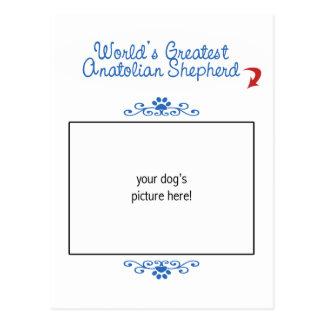 Kundenspezifischer weltbester anatolischer Schäfer Postkarte