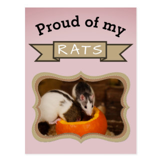Kundenspezifisches Haustier-Ratten-Foto Postkarte