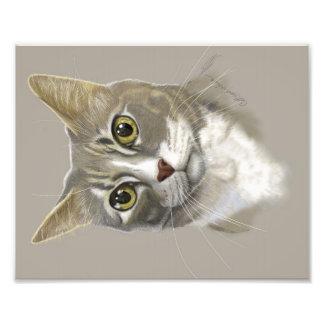 Kunst-Katzenporträt des Fotodruckes 8x10 digitales Fotografische Drucke