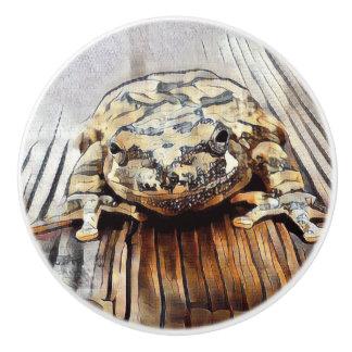 Künstlerische Baum-Frosch-dekorative Keramikknauf