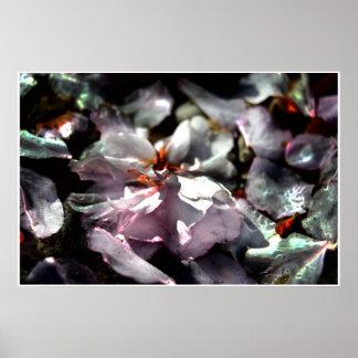 Künstlerisches MakroFoto, gefallene Kirschblüten Poster