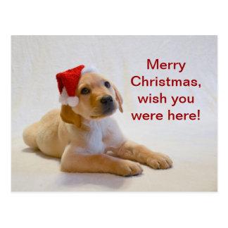 """""""Kupfer"""" sagt frohe Weihnachten! Postkarte"""