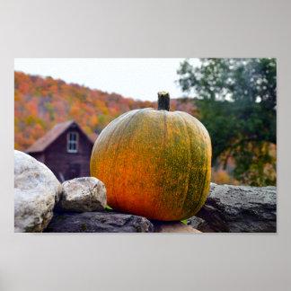 Kürbis auf Felsen-Wand in Vermont, Herbst Poster