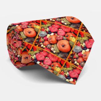 Kürbis-Ernte R01.1.F.2 Krawatte