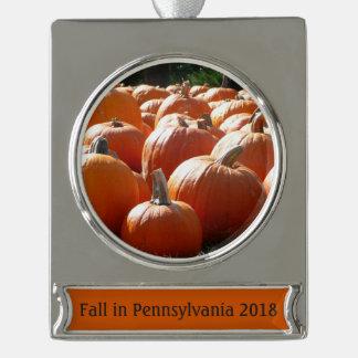 Kürbis-Foto für Fall, Halloween oder Erntedank Banner-Ornament Silber