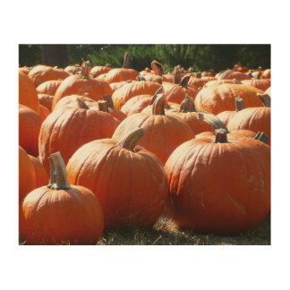 Kürbis-Foto für Fall, Halloween oder Erntedank Holzdruck
