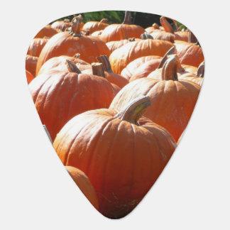 Kürbis-Foto für Fall, Halloween oder Erntedank Plektrum