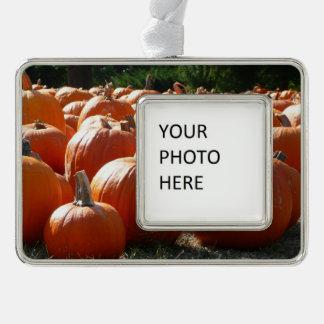 Kürbis-Foto für Fall, Halloween oder Erntedank Rahmen-Ornament Silber